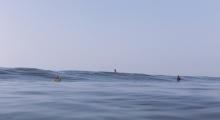 Viking Surfboards (17)